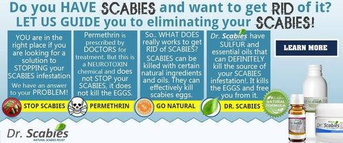 dr. scabies cream personal starter kit treatment to kill scabies, Human body