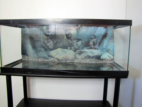 20 gallon long aquarium fish tank and cover w stand and for 20 gallon fish tank lid