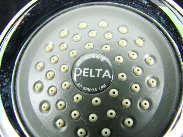 Delta Stainless Steel A112.18.1M Shower Head Chrome Shower Head ...