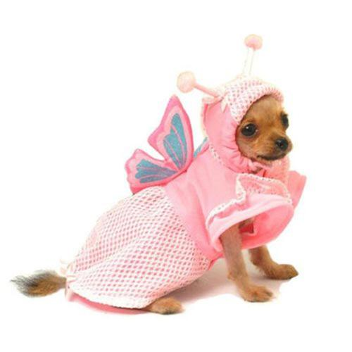 Pampet Pet Fashion Pink Butterfly Dog Puppy Cat Halloween Costume NEW