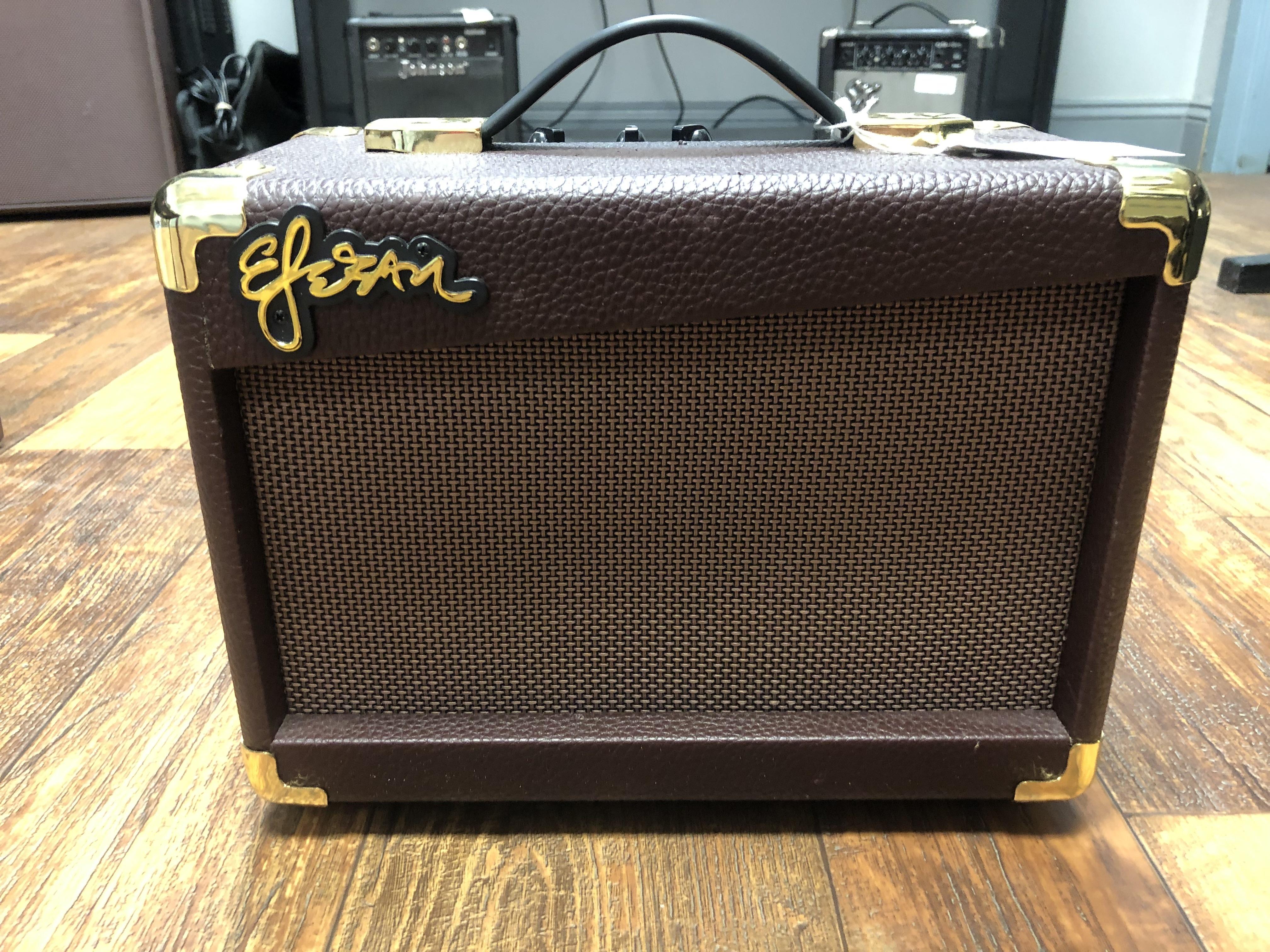 ESTEBAN G-10 AMP