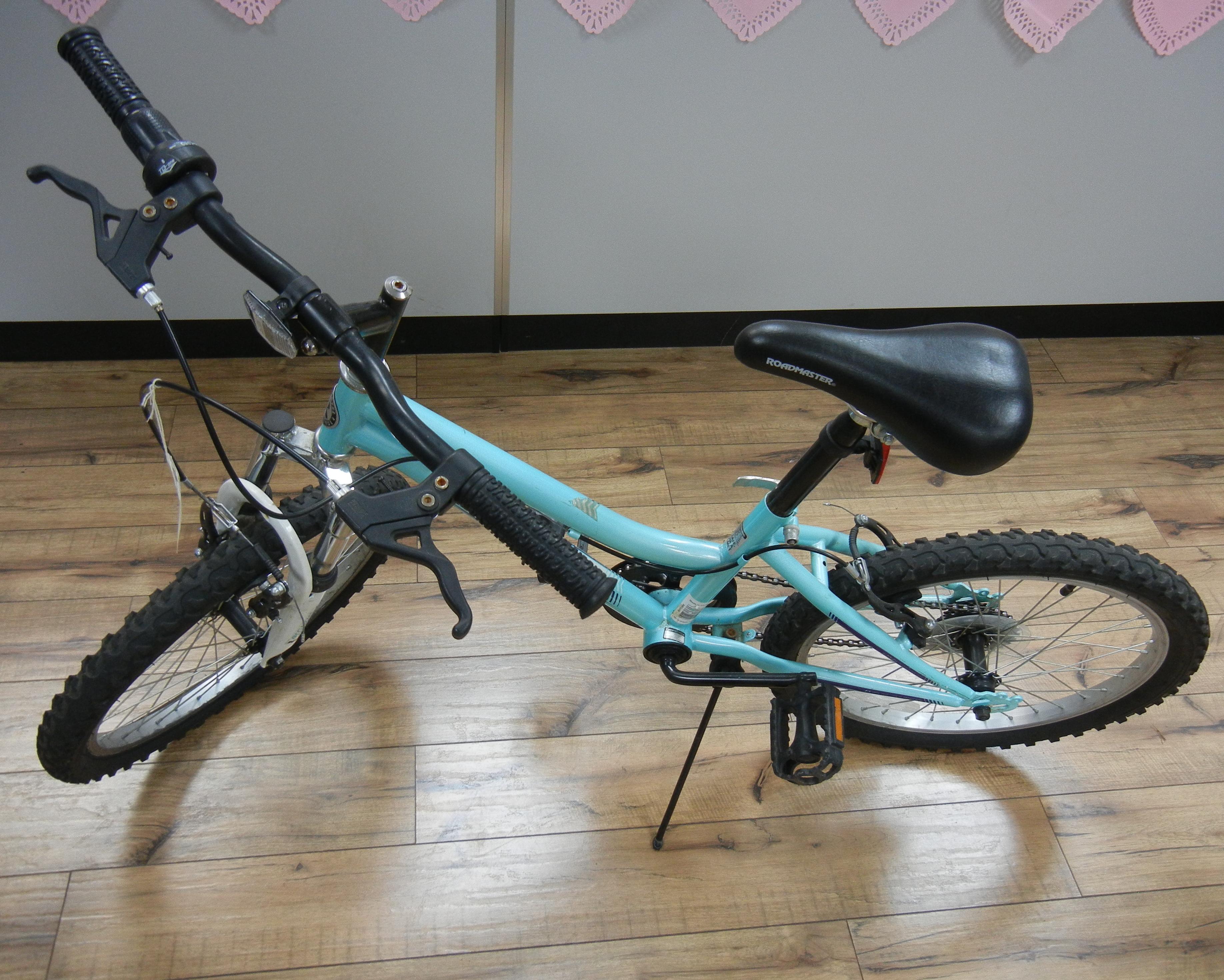 GRANITE BICYCLE  20