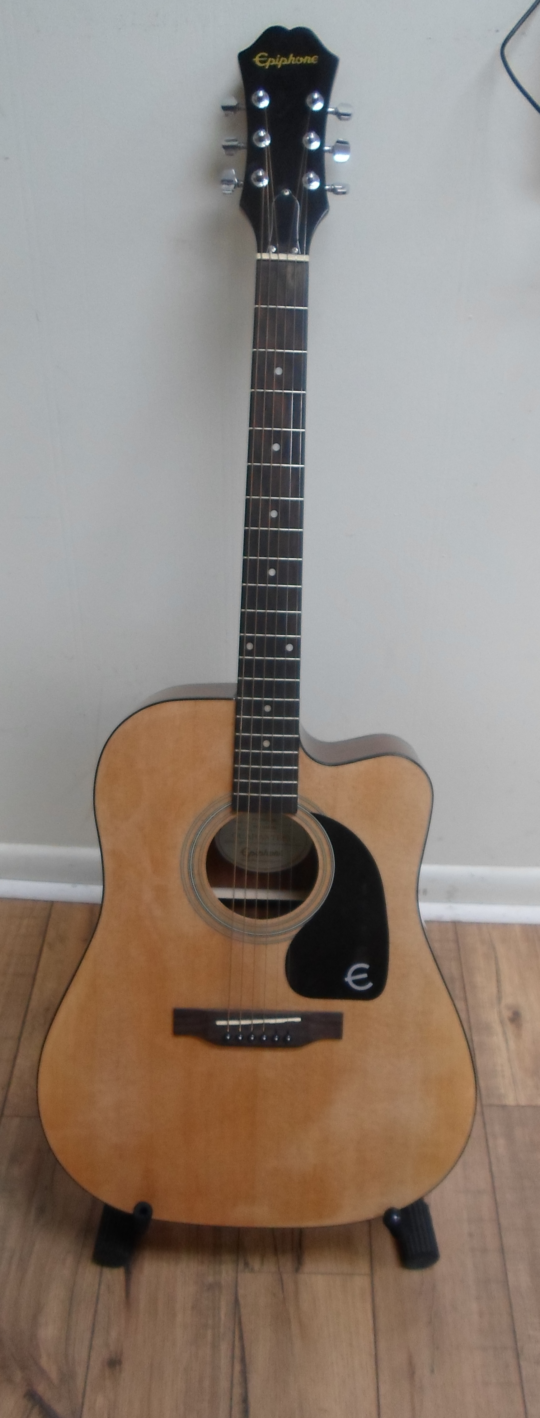 EPIPHONE FT-100 CE